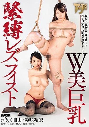 Big Tits Lesbian Wrestling